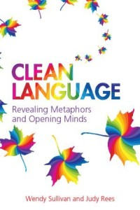 Clean Language Book